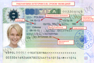 Категория D— долгосрочная виза для длительного нахождения в стране с правом выезда в другие государства на срок не более трёх месяцев каждые полгода