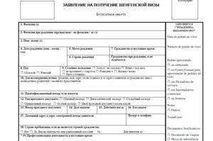 анкету-заявлениена получение визы