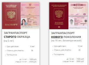 Два вида загранпаспорта