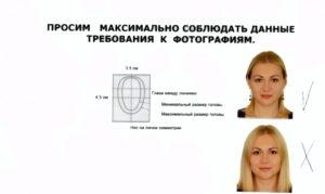 Требования к фото на шенгенскую визу