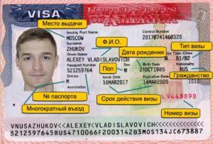 номер американской визы