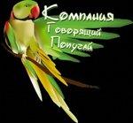 Турфирма Говорящий попугай в Нижнем Новгороде
